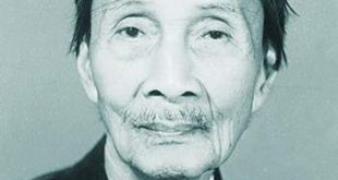 Ho Dac Di 310x165 - Giáo Sư Hồ Đắc Di