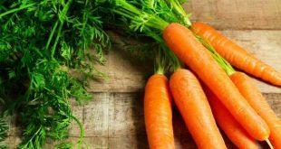 thuoc1 5 310x165 - Tiết lộ những nguyên nhân nên đưa cà rốt vào thực đơn hàng ngày của trẻ