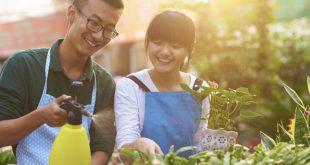 song khoe bao ve moi truong e1527053672259 750x400 310x165 - 10 cách giúp bạn sống khỏe hơn nhờ bảo vệ môi trường