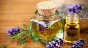 Top 10 Loại tinh dầu thực vật chăm sóc sức khỏe và sắc đẹp tốt nhất